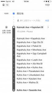 ザ・バス ルート2(GoogleMap)